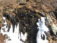 Roan Mountain spring thaw